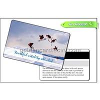 Eco-Friendly Hi-Co Card