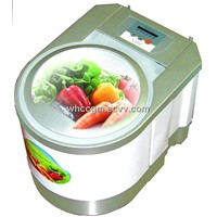 Vegetable and fruit washing machine