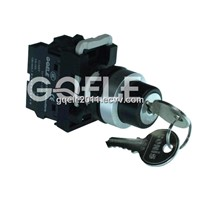 2-Position Key Lock Switch (LA115-A2-11Y)