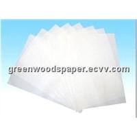 Self-Adhesive Thermal Paper