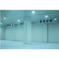 2000MT Cold Room for Vegetable