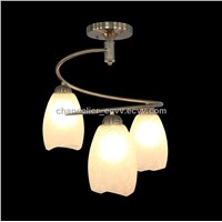 2011 Modern Pendant Lamp & Ceiling Lights Item (9309-3)