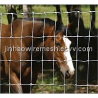 Cattle wire mesh fence