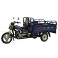 Motorized Tricycle (DY100ZH)