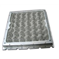 Plastic fruit tray mould