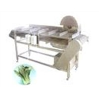 Vegetables cutting root machine