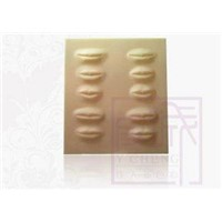 Permanent Makeup Rubber Fake Tattoo Practice Skins Lip Sheet