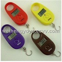 WeiHeng Mini Electronic scale A10 15kg/5g