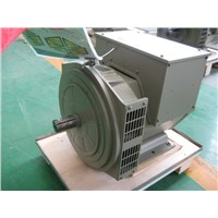 Trustworthy Single/Three Phase 50/60Hz 110-690V AC Alternator