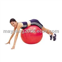 Exercise Fitness Ball (WY-HBF01)