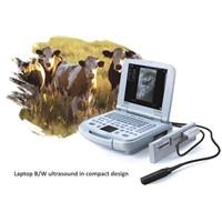 Veterinary Imaging Ultrasound Device