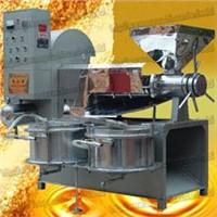 Rapeseed Oil Press Machine