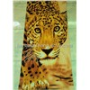 cotton  beach towel .reactive printing beach towel