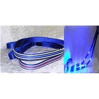 Hot LED Dog Leash & Collar