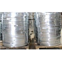 Customized Cutting Minimized Spangle Hot Dip Galvanized Steel Strip