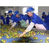 apple juice processing production line equipment