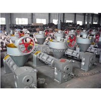 automatic screw Oil press machine