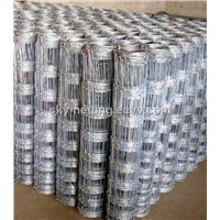 Galvanized Grassland Fence for Feeding ( Direct Factory from Anping )