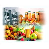Fruit processing plant, fruit juice making, jam making machine, rogerzdy#gmail.com
