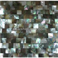 Blacklip mother of pearl shell wall panel in block style