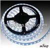 White Color LED Strip & LED Light