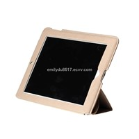 best-selling slim canvas case for new iPad