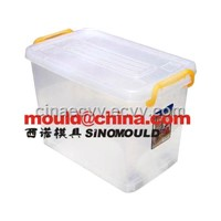 box mould/ storage box mould/food container/ coleection mould/