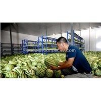 Cold storage room for fruit and vegetable farm TOP-10