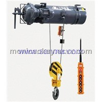Electric wire rope hoist for marine application
