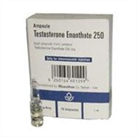 Testosterone Enanthate 250 - 10 amps x 250 mg/ml