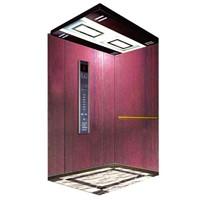 Home / Villa Elevator (SN-BS05)