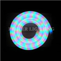 24V 120V High Brightless Waterproof RGB Color Jacket Led Neon Flex Light For Decoration
