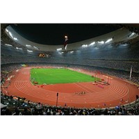 Iaaf Certified Prefabricated Rubber Running Athletic Track