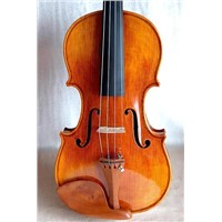 Moderate Violin Quality Solid Spruce Uniform Pattern Maple sltq19