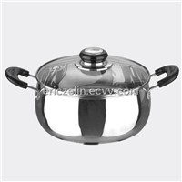 Stainless steel Visual stockpot