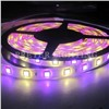 RGBW SMD5050 Waterproof Flexible LED Strips Rope Lighting for Landmark Buildings, Bar