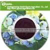 Wild Blueberry Extract Powder/Anthocyanin/Pterostilbene/Anthocyanosides/Extract Powder