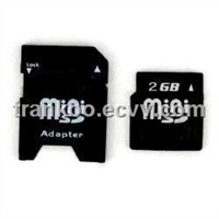 2GB Mini SD Card with Adapter