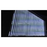 EEFL Light for lightbox