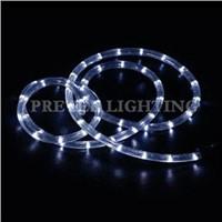 LED Rope Light (PL-2D-W-36)