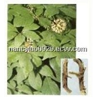 Siberian Ginseng Extract wi th Eleutheroside B+E 0.8%