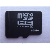 2GB Micro SD Card (Memory Card / TF Card)