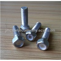 Carriage Bolt (M6-M20)/Stainless Steel Thread Rod/Nylon Anchor