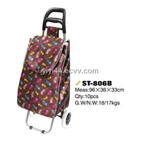 Folding shopping trolley & shopping cart bag