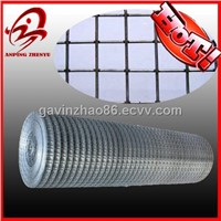 Hot dipped Galvanized After Welded Wire Mesh(factory)