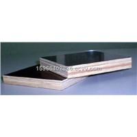 film faced plywood/ big sized plywood