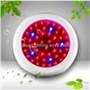 Mini UFO 50W LED Grow Light