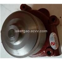 D20-000-32 Shanaghai Engine Water Pump Assembly