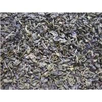 Weight loose green tea gunpowder9275 Chinese famous gazelle brand