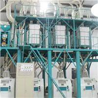 40T/24h wheat flour grinding machine